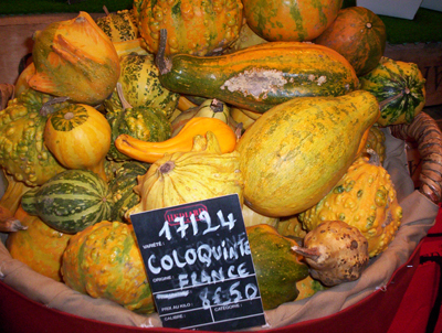 Lp_gourds
