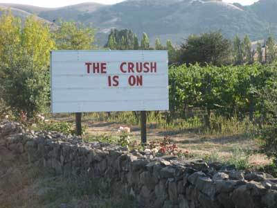 Crush_sign