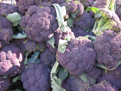 Greenmarket_purple_broccoli